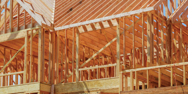 Bonito Carpentry – Trust the Process, Build with Beauty